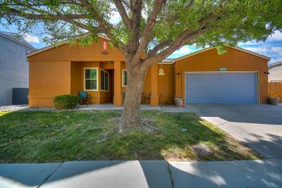 Rio Rancho Single Family Home For Sale: 1424 Lupine Drive NE