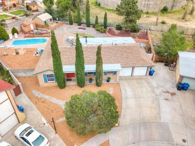 Albuquerque Single Family Home For Sale: 4709 Bali Court NE