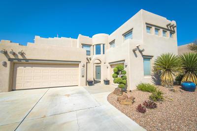 Albuquerque Single Family Home For Sale: 12005 Sullivan Court NW