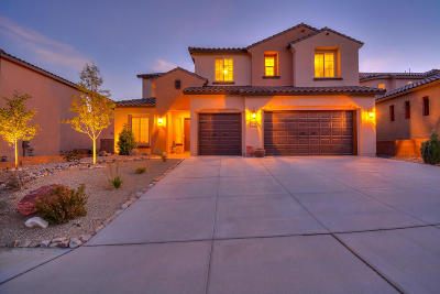 Rio Rancho Single Family Home For Sale: 811 Mesa Roja Trail NE NE