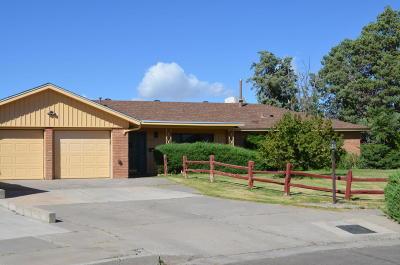 Albuquerque Single Family Home For Sale: 8901 Haines Avenue NE