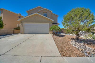 Albuquerque Single Family Home For Sale: 10527 Safford Place NW