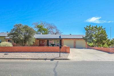 Rio Rancho Single Family Home For Sale: 1004 38th Street SE