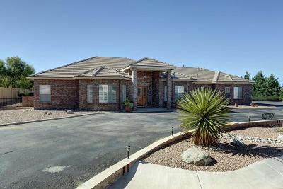 Albuquerque Single Family Home For Sale: 10710 Pino Avenue NE