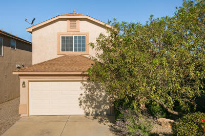 Rio Rancho Single Family Home For Sale: 709 Playful Meadows Circle NE