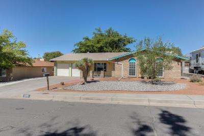 Albuquerque Single Family Home For Sale: 12205 Towner Avenue NE