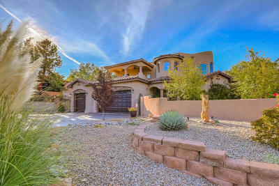 Albuquerque Single Family Home For Sale: 9999 Radcliffe Road NW