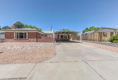 Albuquerque Single Family Home For Sale: 3209 Riviera Place NE