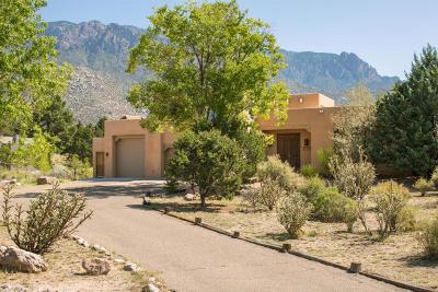 Albuquerque Single Family Home For Sale: 751 Tramway Lane NE