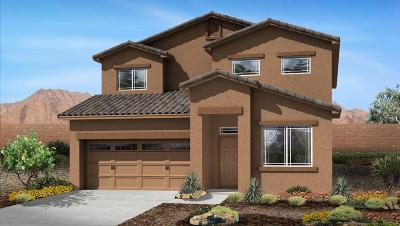 Albuquerque Single Family Home For Sale: 5943 Ermemin Avenue NW