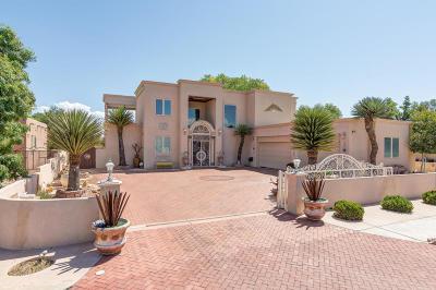 Albuquerque Single Family Home For Sale: 412 Cilantro Lane NW