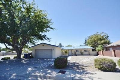 Albuquerque Single Family Home For Sale: 1401 Somervell Street NE