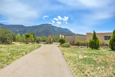 Placitas Single Family Home For Sale: 11 Quail Meadow Road