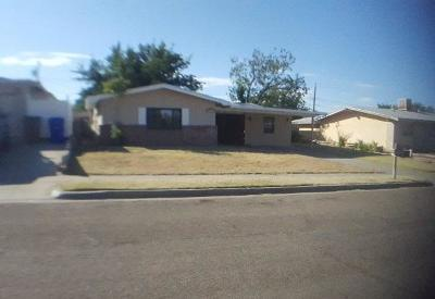Las Cruces Single Family Home For Sale: 1910 Coleen Avenue