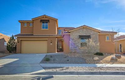 Rio Rancho Single Family Home For Sale: 4013 Colina Roja Lane NE