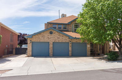 Albuquerque Single Family Home For Sale: 4816 Summerlin Road NW