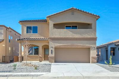 Valencia County Single Family Home For Sale: 1612 Valle Vista NW