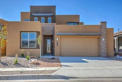 Albuquerque NM Single Family Home For Sale: $380,521