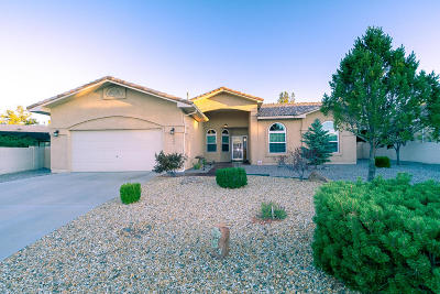 Rio Rancho Single Family Home For Sale: 3844 Spyglass Loop SE