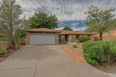 Albuquerque Single Family Home For Sale: 1309 Sasebo Street NE