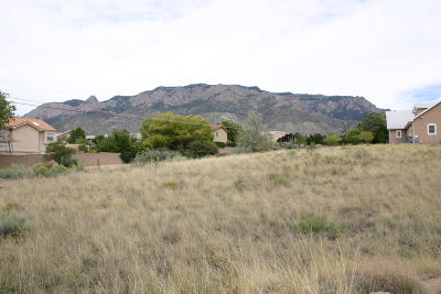 Residential Lots & Land For Sale: Anaheim Avenue NE