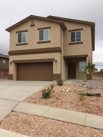 Albuquerque Single Family Home For Sale: 10639 Pictograph Road SW