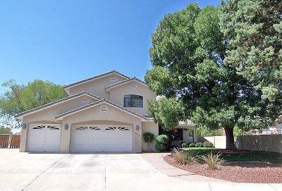 Single Family Home For Sale: 7905 Rosas Court NE