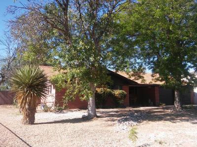 Corrales Single Family Home For Sale: 1200 Cielo Vista Del Sur NW