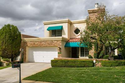 Albuquerque Single Family Home For Sale: 10021 Barrinson NE