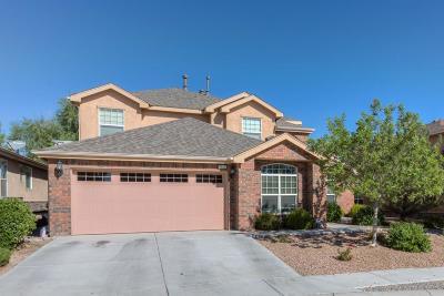 Albuquerque Single Family Home For Sale: 7843 Via Vista Mesa NW