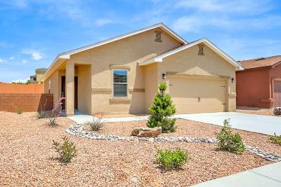 Albuquerque Single Family Home For Sale: 3001 Tierra Dorado Drive SW