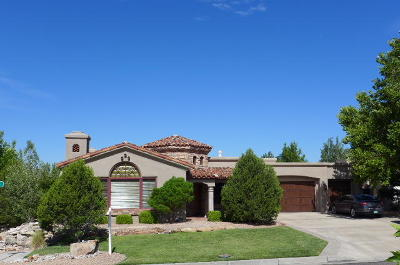 Albuquerque NM Single Family Home For Sale: $750,000
