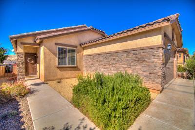 Rio Rancho Single Family Home For Sale: 3613 Tierra Abierta Place NE