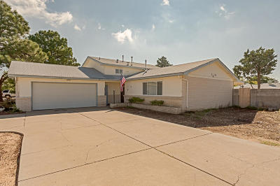 Albuquerque Single Family Home For Sale: 5816 Whiteman Drive NW