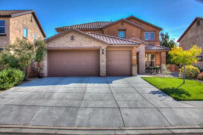 Rio Rancho Single Family Home For Sale: 22 Monte Vista Drive NE