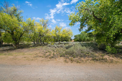 Bernalillo County Residential Lots & Land For Sale: Price Lane Lot A-1-A