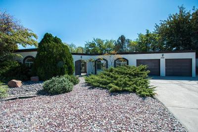 Rio Rancho Single Family Home For Sale: 3702 Rose Circle SE
