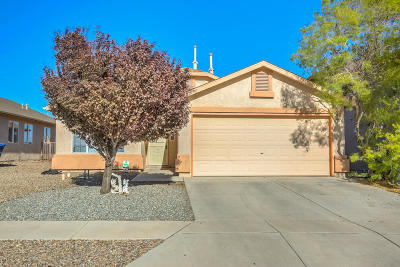 Albuquerque Single Family Home For Sale: 2516 Blue Sky Street SW
