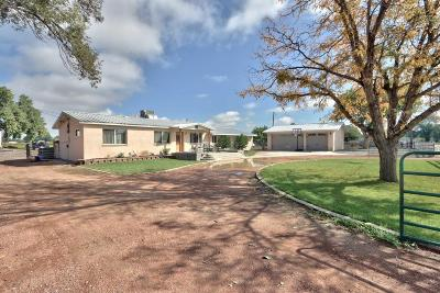 Valencia County Single Family Home For Sale: 1430 Caballo Lane