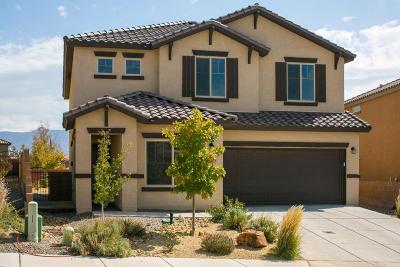 Rio Rancho Single Family Home For Sale: 118 Las Medanales Court NE