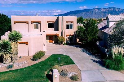 Rio Rancho NM Single Family Home For Sale: $435,000