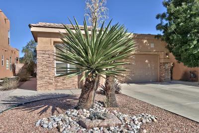 Rio Rancho Single Family Home For Sale: 50 Prestwick Court SE