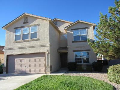 Rio Rancho Single Family Home For Sale: 705 Valley Meadows Drive NE