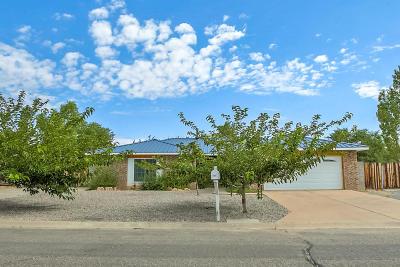 Rio Rancho Single Family Home For Sale: 2101 Spruce Needle Road SE