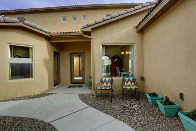 Albuquerque Single Family Home For Sale: 9944 Bellevue Street NW