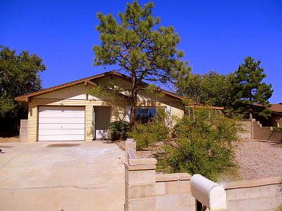 Rio Rancho Single Family Home For Sale: 1685 5th Street SE