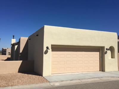 Albuquerque Single Family Home For Sale: 5132 San Adan Avenue NW