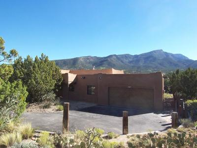 Placitas Single Family Home For Sale: 1 Black Bear Point