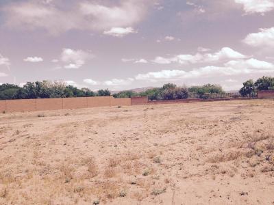 Bernalillo County Residential Lots & Land For Sale: 4704 Valle Bonita Lane NW