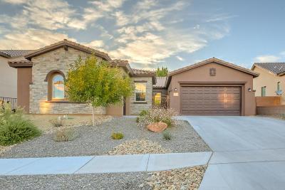 Rio Rancho Single Family Home For Sale: 35 Vista Larga Place NE